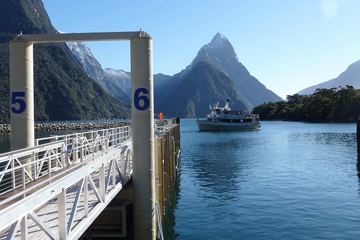 milford-sound-harbour-06