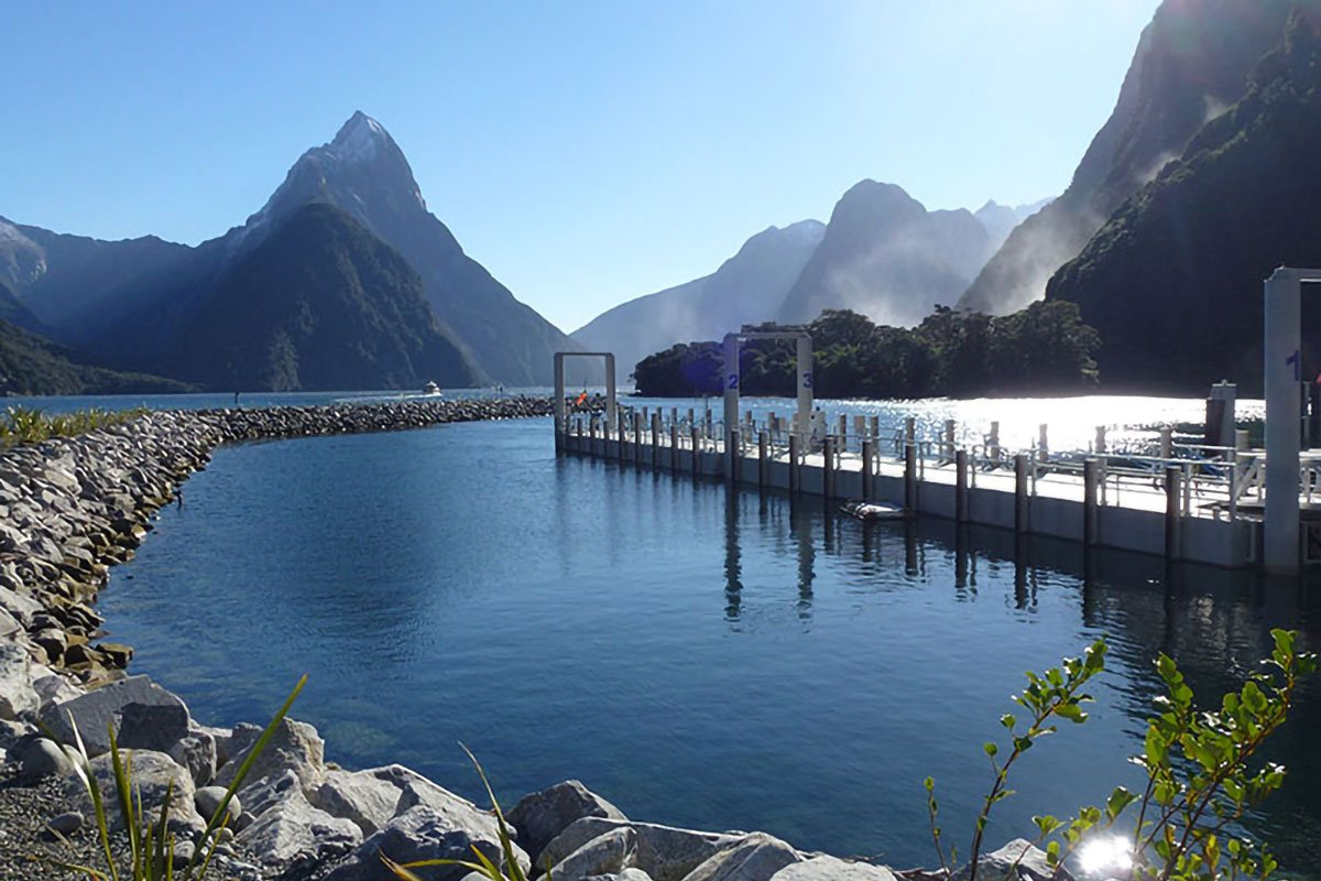 milford-sound-harbour-07
